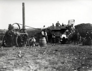 A photograph of threshing machine with a group of people in a field taken between 1880 and 1910.