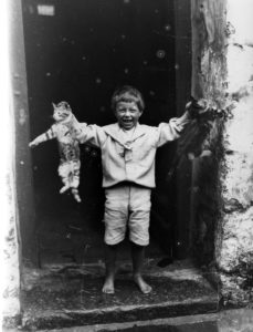 19th century photograph of boy holding two cats in St Ives.