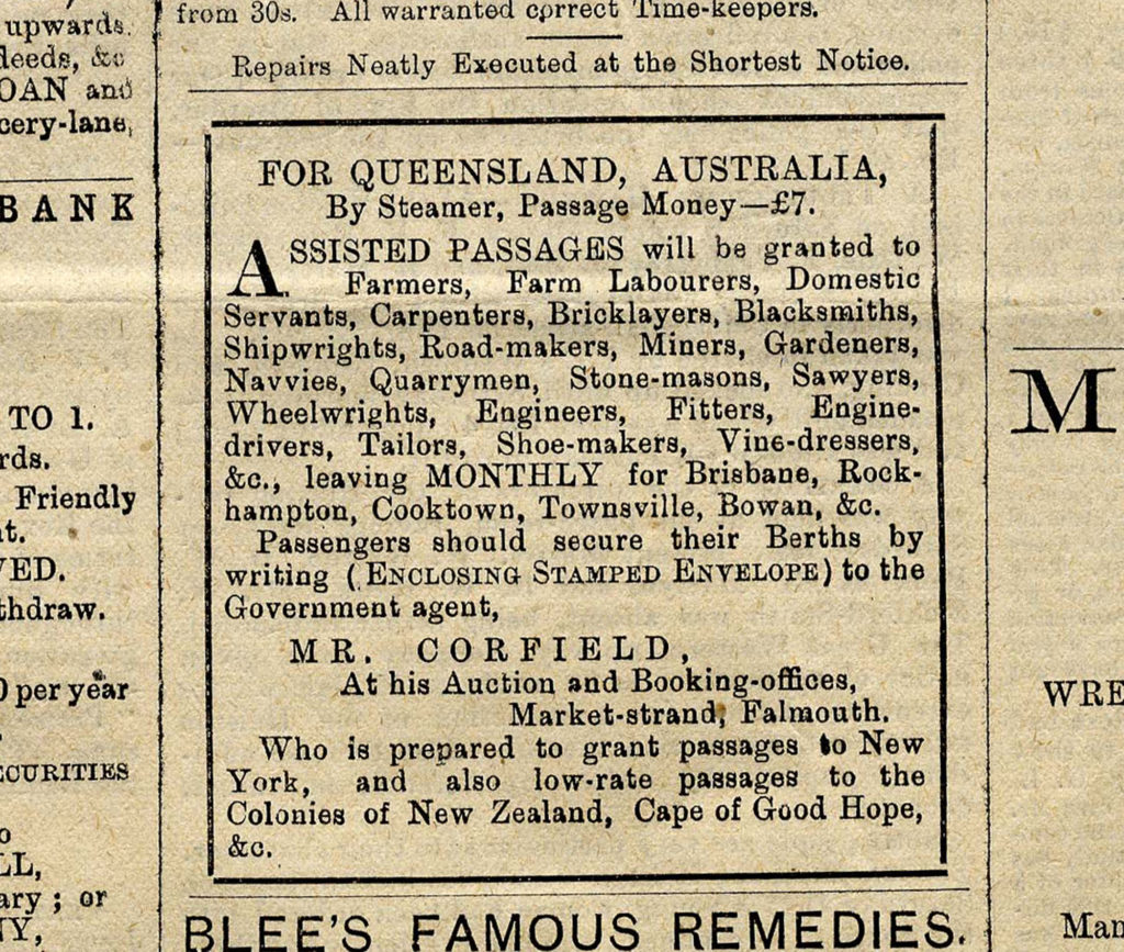A newspaper cutting from The Cornishman dated 20 Nov 1884.