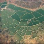Aerial photograph showing field boundaries in Bosigran