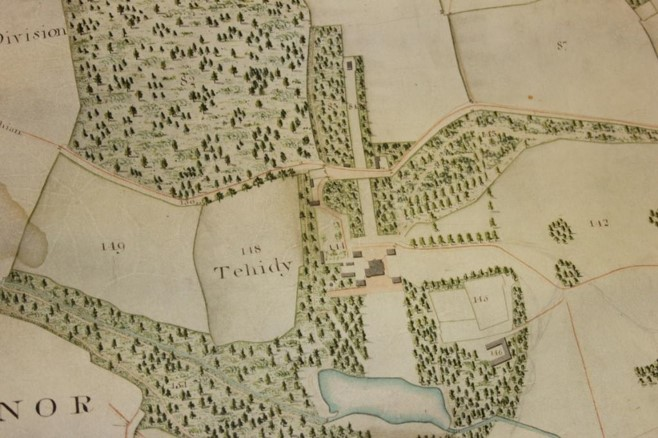 Photograph of extract of coloured, hand drawn map showing Tehidy.