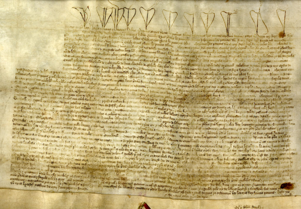 Colour photograph of medieval royal charter