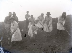 Photograph of women working on a farm.