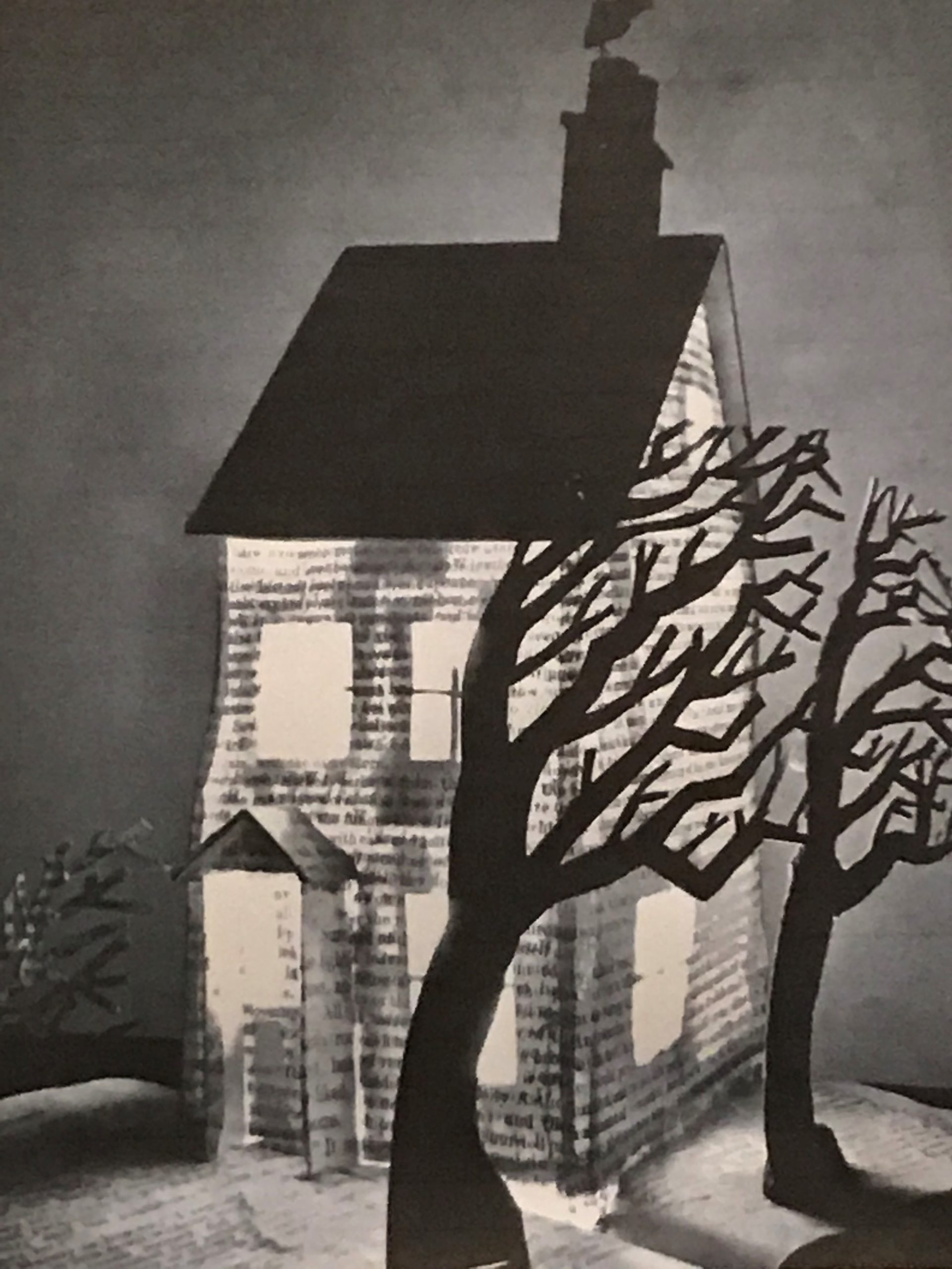 Photo of a black and white collage showing a house and trees.