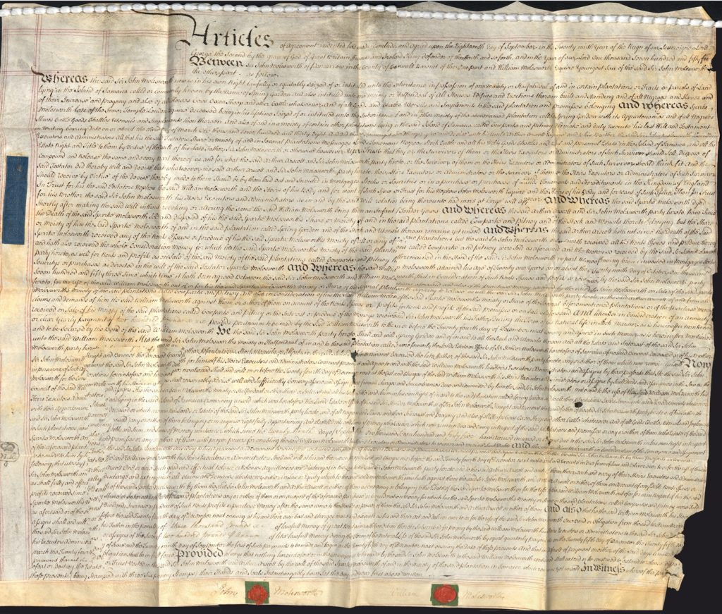 Colour scan of a large handwritten document.